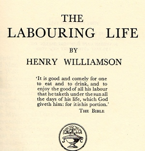 LLife title page