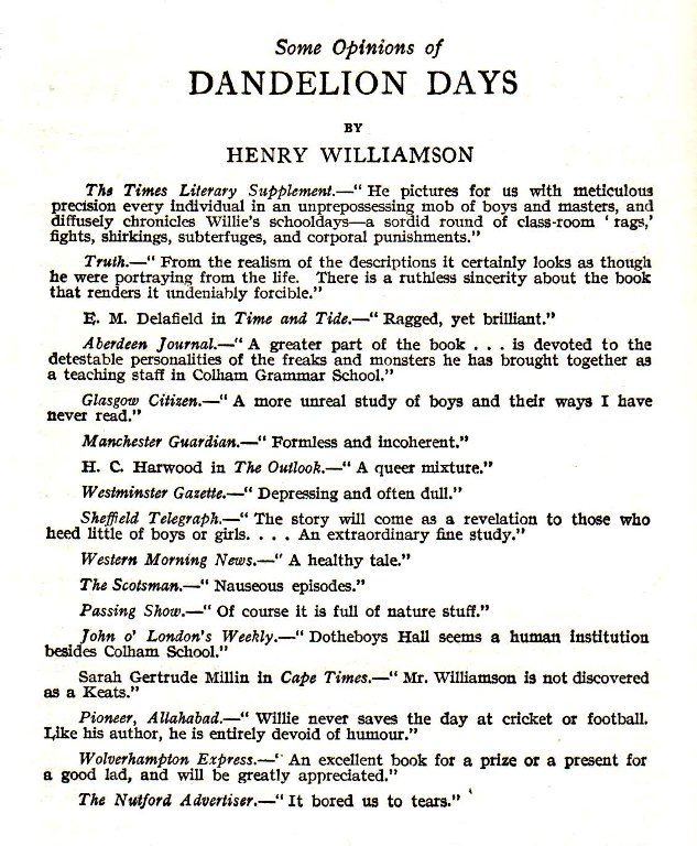 dandelion days reviews2