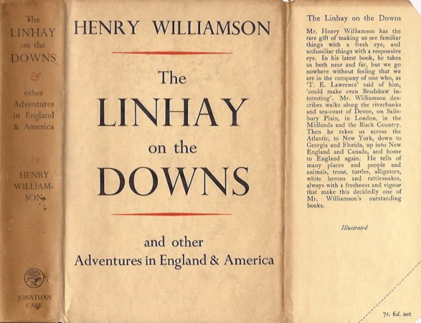 downs 1934 cover