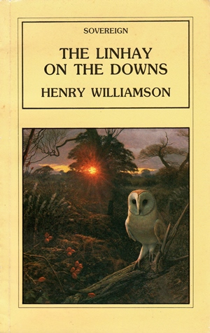downs 1984 cover