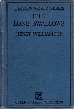 lone swallows 24a front