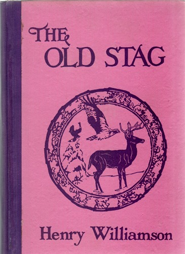 old stag US